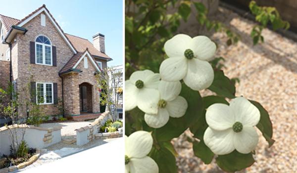 守山モデルハウスのお庭が見ごろを迎えています♪