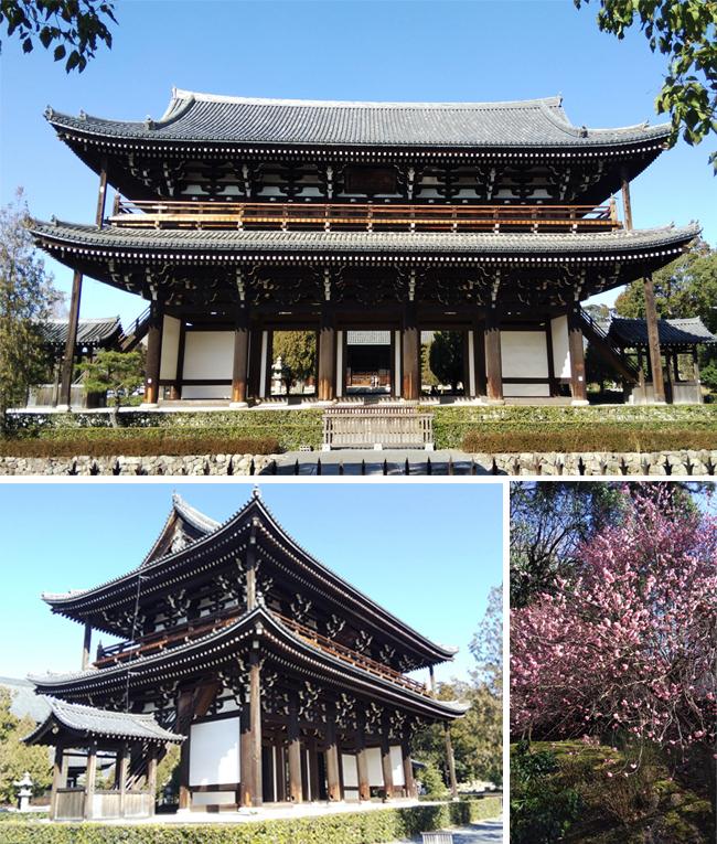 「東福寺本坊庭園」